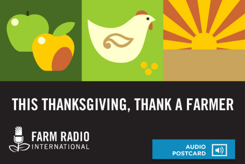 Top 20 Thanksgiving Promotions Unlimited Graphic Design Service